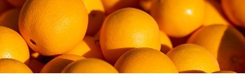 Tumut Grove Citrus